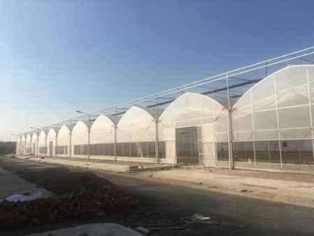 建温室大棚多少钱
